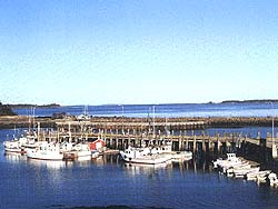 Lobster wharf & pound on Deer Island